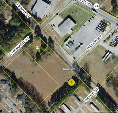 HOWARD/PEARL STREET, Roseboro, NC 28382 - Photo 1