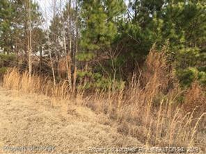85 CHARACTER CT, Bunnlevel, NC 28323 - Photo 2