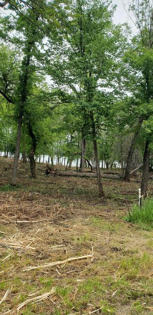 LOT 3 BLUEGILL BAY ESTATES --, Ashby, MN 56309 - Photo 2