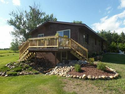 29533 505TH AVE, Henning, MN 56551 - Photo 1