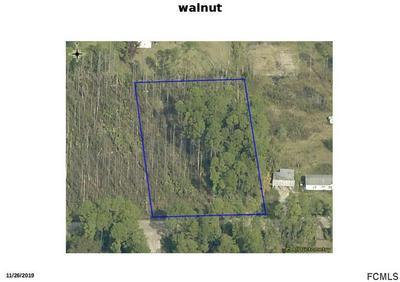 5554 WALNUT AVE, Bunnell, FL 32110 - Photo 1