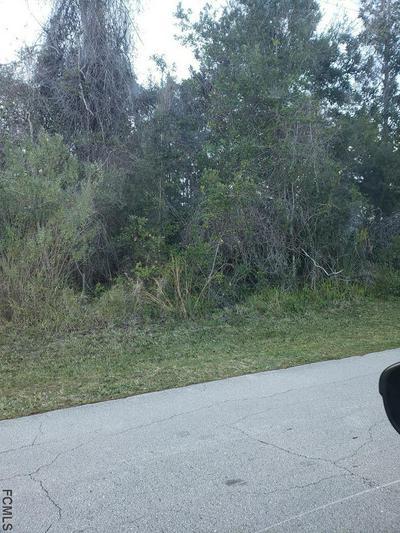 164 FRANKFORD LN, Palm Coast, FL 32137 - Photo 1