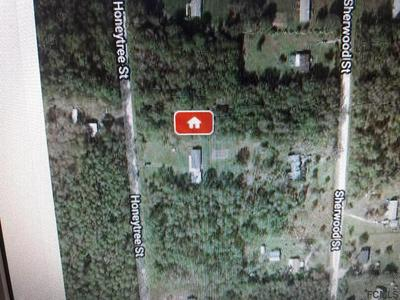 1261 HONEYTREE ST, Bunnell, FL 32110 - Photo 2