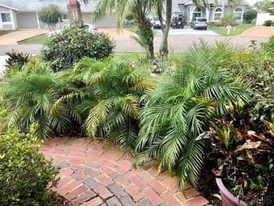 24 CROSSBOW CT, Palm Coast, FL 32137 - Photo 2