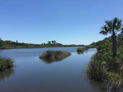 35 BULOW WOODS CIR, Flagler Beach, FL 32136 - Photo 1