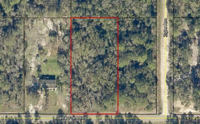 5150 CEDAR FORD BLVD, Hastings, FL 32145 - Photo 1