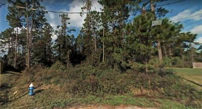 8 LLETHORNE PL, Palm Coast, FL 32164 - Photo 1