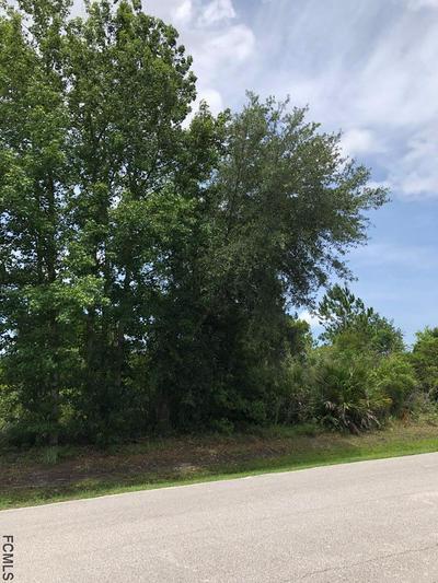 11 LONGVIEW LN, Palm Coast, FL 32137 - Photo 1