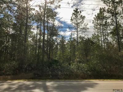 4795 MAHOGANY BLVD, Bunnell, FL 32110 - Photo 1