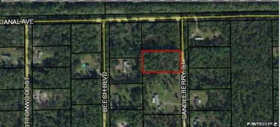 1058 CANDLEBERRY ST, Bunnell, FL 32110 - Photo 2