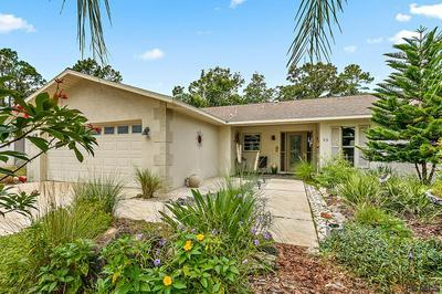 53 BLAINE DR, Palm Coast, FL 32137 - Photo 1