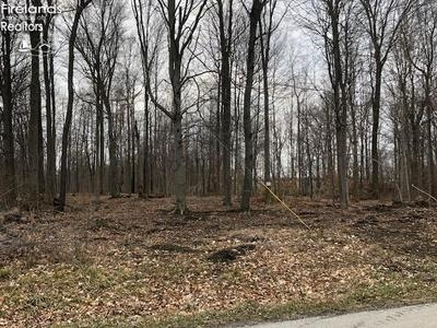0 TOWNSHIP HWY. 136, Sycamore, OH 44882 - Photo 1