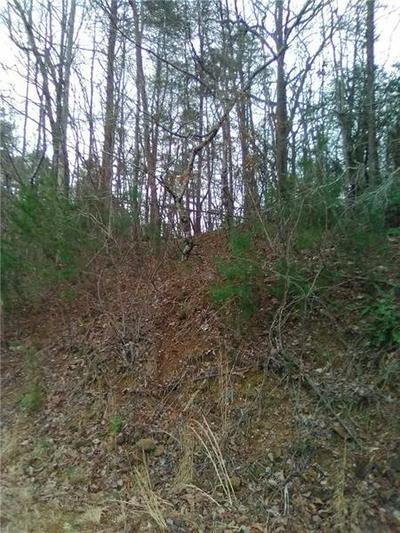 3819 AFTON RD, Dawsonville, GA 30148 - Photo 2
