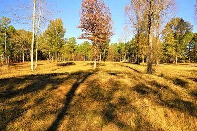 0 EAGLE VIEW DRIVE, Monticello, GA 31064 - Photo 2