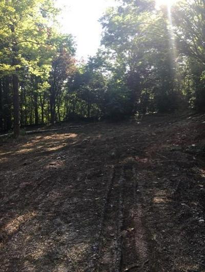1240 SUMMIT RD, Milton, GA 30004 - Photo 2