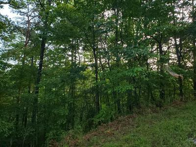 LOT 10 GOBLE GAP, Clayton, GA 30525 - Photo 1