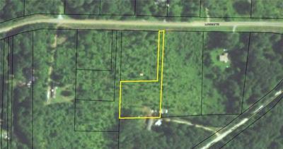 0 LARGENT (LOT 43B) TRAIL, Tallapoosa, GA 30176 - Photo 1