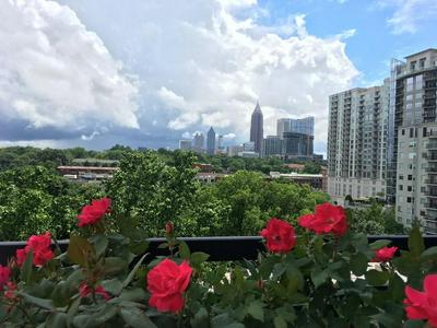 1130 PIEDMONT AVE NE APT 1211, Atlanta, GA 30309 - Photo 1