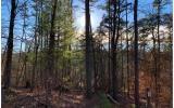 1684 SHADE TREE DRIVE, Ellijay, GA 30540 - Photo 1