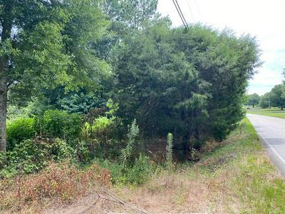 0 GINN STREET, Carnesville, GA 30521 - Photo 2