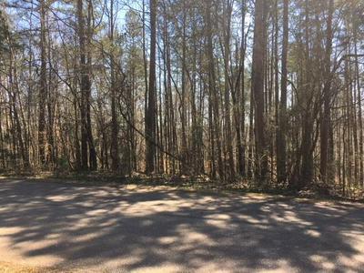 LOT 4B HUNTERS GLEN, Maysville, GA 30558 - Photo 2