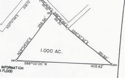 0 SMITH WARNER ROAD, NEWNAN, GA 30263 - Photo 2