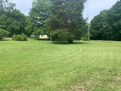 3131 S SMITH RD, Loganville, GA 30052 - Photo 1