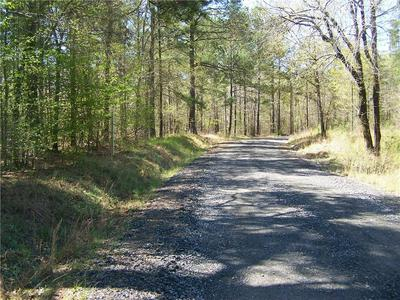 0 NE MARSHALL ROAD, Buckhead, GA 30625 - Photo 2