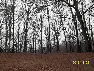 6224 EAGLE CT, Gainesville, GA 30506 - Photo 1