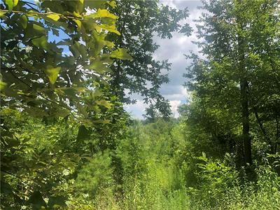 0 HAMMONTREE DRIVE, La Fayette, GA 30728 - Photo 2