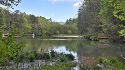 62 CHERRY LAKE COURT, Cherry Log, GA 30522 - Photo 1