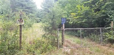 0 SHURLEY ROAD, Warrenton, GA 30828 - Photo 1