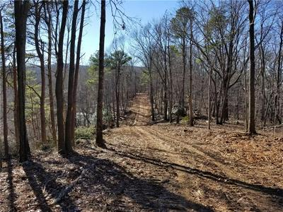 TRC 2 TOWER ROAD, Waleska, GA 30183 - Photo 2
