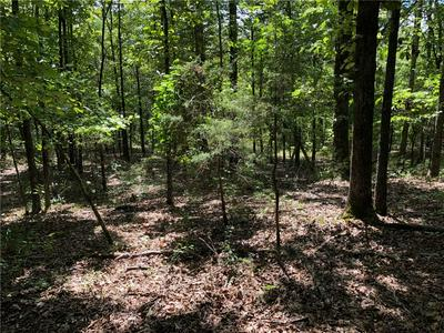 TBD DRY HILL LOOP, Cedarville, AR 72932 - Photo 2