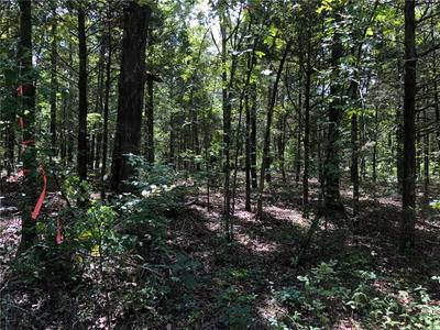 TBD DRY HILL LOOP, Cedarville, AR 72932 - Photo 1