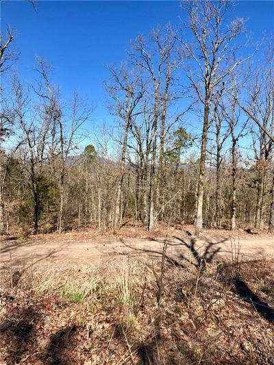 TBD PEBBLE FIELD, Waldron, AR 72958 - Photo 2