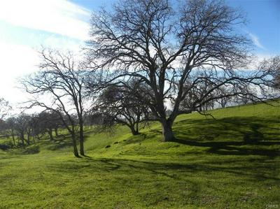 LOT 1 MISTY RIDGE ROAD, Raymond, CA 93653 - Photo 1