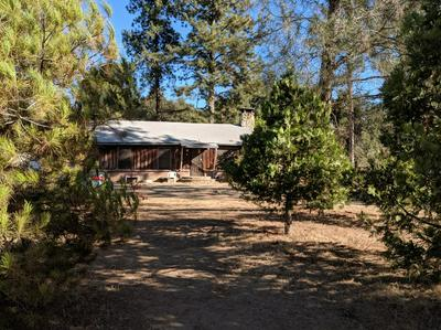 42727 ROAD 628, AHWAHNEE, CA 93601 - Photo 2