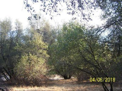 0 BIG OAK FLAT S, Oakhurst, CA 93644 - Photo 1