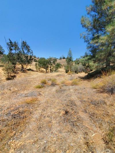 98 FLINT, Friant, CA 93626 - Photo 2