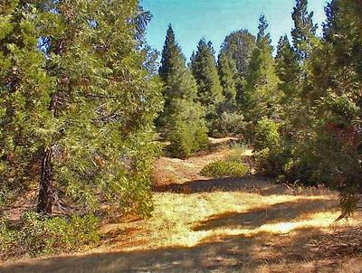 0 HWY 180, Miramonte, CA 93641 - Photo 1