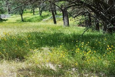LOT 2 MISTY RIDGE ROAD, Raymond, CA 93653 - Photo 2