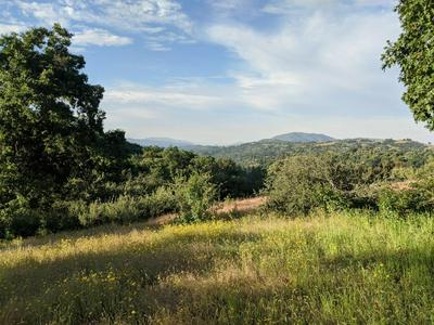0 15 AC HWY 245, Miramonte, CA 93641 - Photo 2