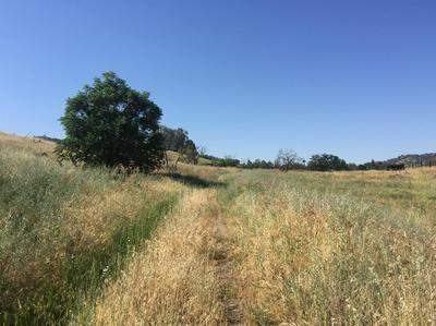 0 PLEASANT OAK DRIVE, Springville, CA 93265 - Photo 1