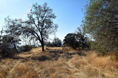 0 WHISPERING SPRINGS, Tollhouse, CA 93667 - Photo 1
