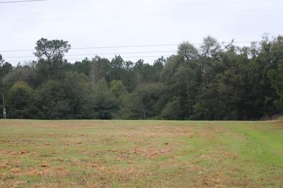 2188 MCELMURRAY RD, HEPHZIBAH, GA 30815 - Photo 2