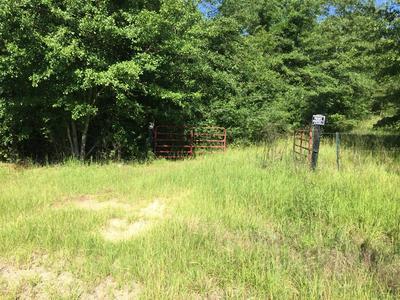 947 BLYTHE RD, Blythe, GA 30805 - Photo 2