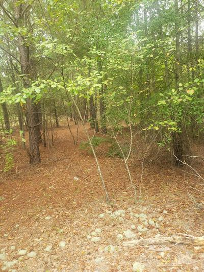 1 NORRIS RD, Warrenton, GA 30828 - Photo 1