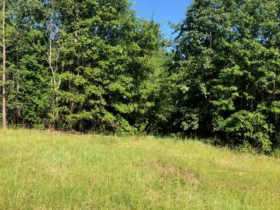 1716 RANGER RD, Warrenton, GA 30828 - Photo 1