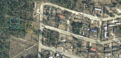 2L NONE, North Augusta, SC 29860 - Photo 1